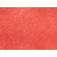 Karo-art Fotobehang - Koraal textuur