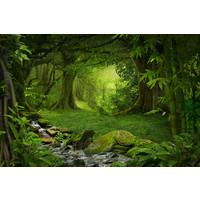 Karo-art Fotobehang - Magisch bos II
