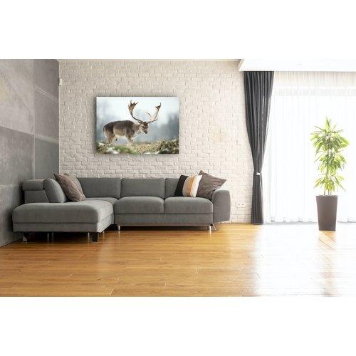 Karo-art Schilderij - Close-up van Hert , Bruin/Wit,  2 maten, Premium print