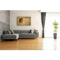 Karo-art Schilderij - Leeuw in hoog gras, Bruin,  2 maten, Premium print