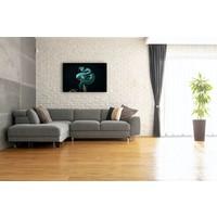 Karo-art Schilderij - Slang op zwarte achtergrond ,  2 maten, Premium print