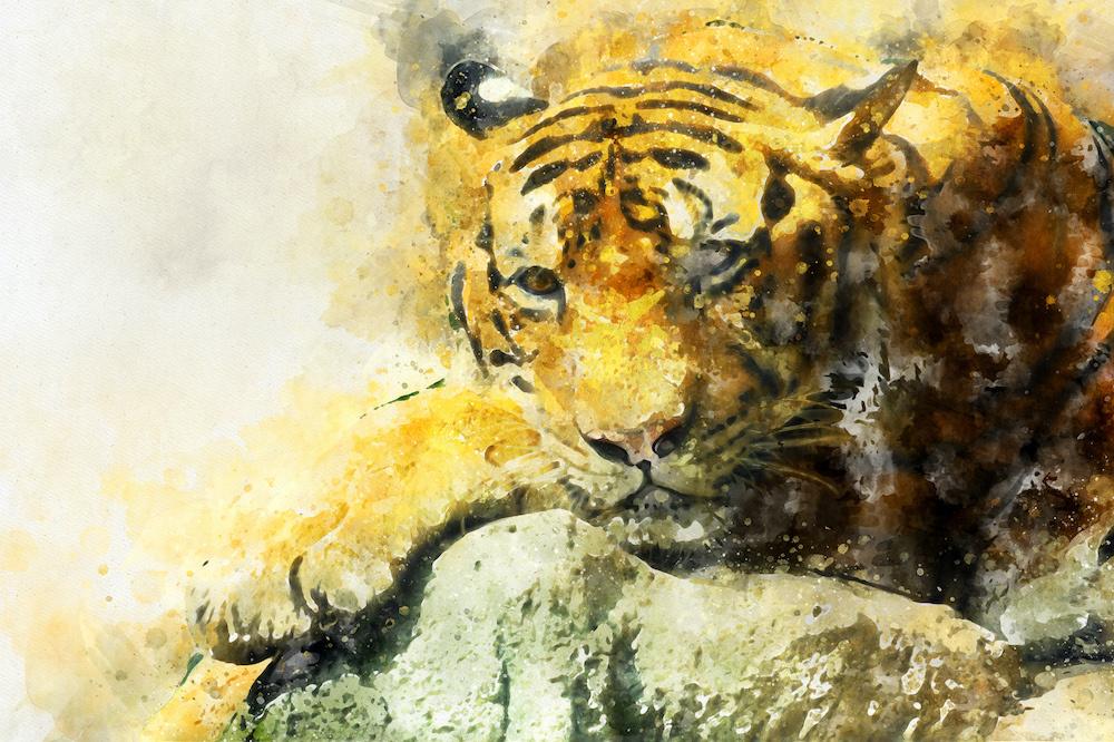 Schilderij - Tijger aquarel (print op canvas), 2 maten, Premium print