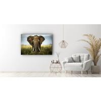 Karo-art Schilderij - Olifant close-up,  2 maten, Premium print
