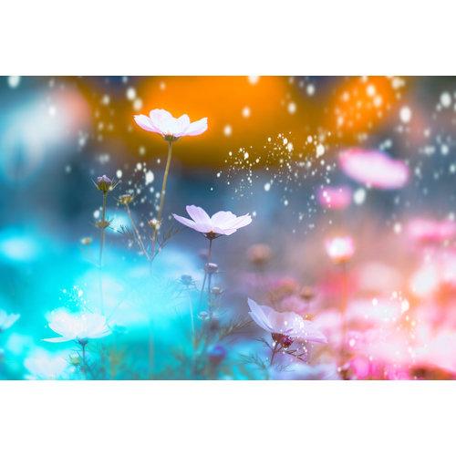 Karo-art Schilderij - Magische bloemen,  2 maten, Premium print