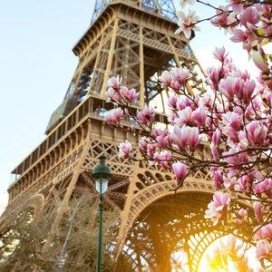 Karo-art Schilderij - Close up Eiffeltoren, 3 maten, print op canvas