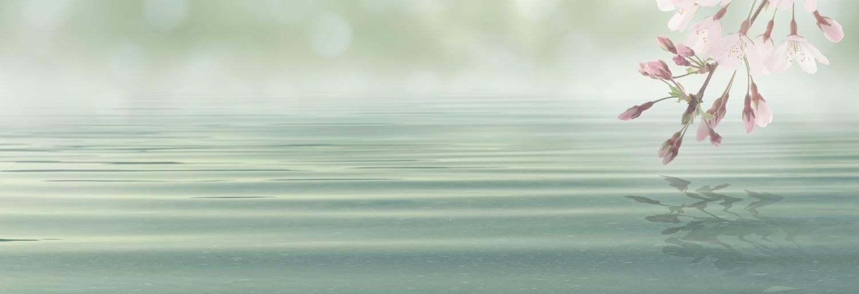 Schilderij - Bloesem in het roze boven mint groene zee, panorama, 2 maten