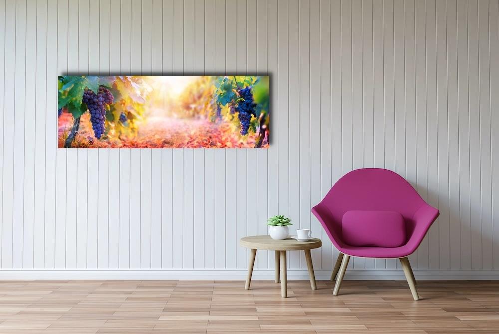 Schilderij -Druiven aan wijnranken, Premium print (wanddecoratie)