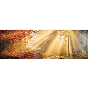 Karo-art Schilderij -Herfst bos, panorama, premium print print (wanddecoratie)