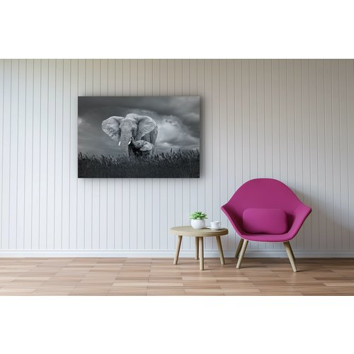 Karo-art Afbeelding op acrylglas- Moeder en baby olifant, 80x60cm.  Zwart-Wit,   Premium print