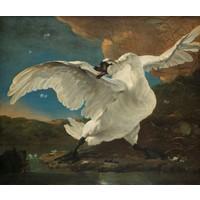 Karo-art Schilderij - Jan Asselijn, De bedreigde zwaan, ca.1650, 70x60cm.