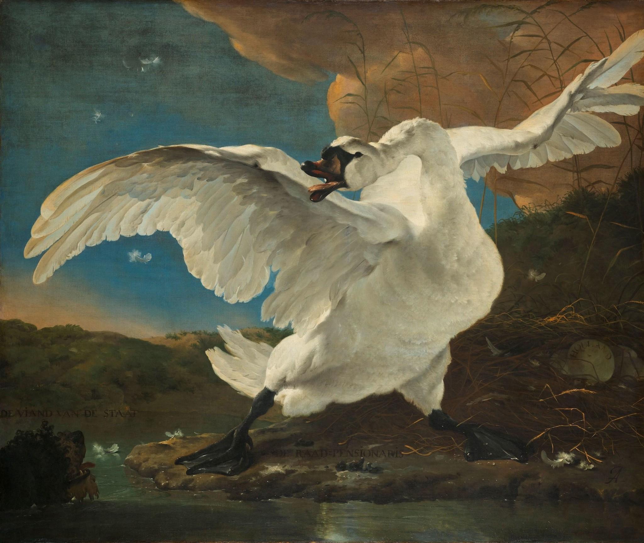 Schilderij - Jan Asselijn, De bedreigde zwaan, ca.1650, 70x60cm.