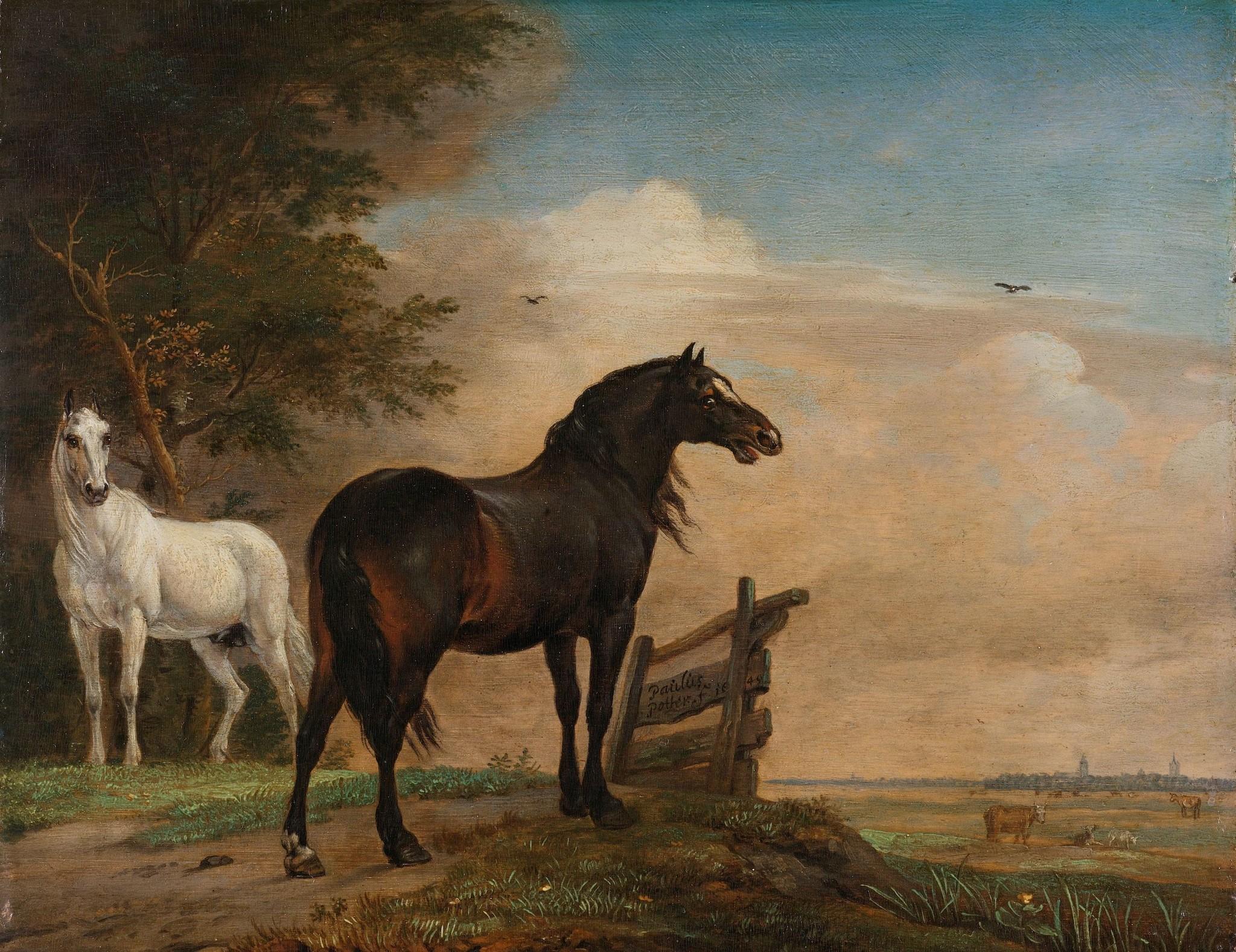 Schilderij - Paulus Potter, Twee paarden in de wei bij een hek, 1649, reproductie, 60x80cm