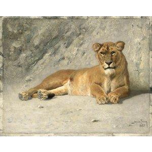 Karo-art Schilderij - Jan van Essen, Rustende Leeuwin, 80x60cm.  1885