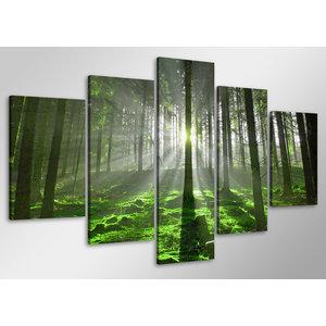Schilderij - Zonlicht door de bomen, Bos,   100x50 cm.  5 luik, wanddecoratie