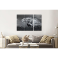 Karo-art Schilderij - Moeder en baby olifant, 3 luik, 120x80cm, wanddecoratie