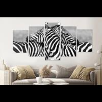 Karo-art Schilderij - Zebra liefde in zwart en wit, 5 luik, 200x100cm