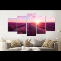 Karo-art Schilderij -Lavendelveld,   5 luik, 200x100cm, Premium print