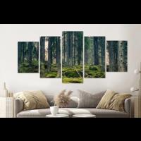 Karo-art Schilderij -Mysterieus bos, groen,    5 luik, 200x100cm, Premium print