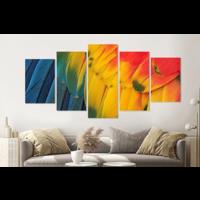 Karo-art Schilderij -Veren Papegaai,   5 luik, 200x100cm, Premium print