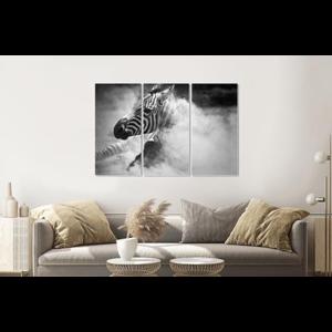 Karo-art Schilderij -Zebra in het stof,  3 luik, 120x80cm, premium print