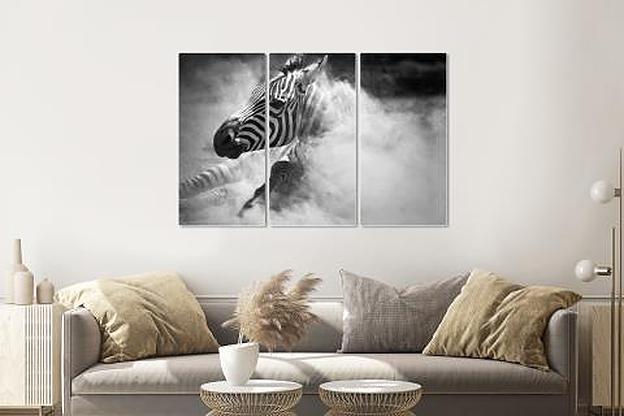 Schilderij -Zebra in het stof, 3 luik, 120x80cm, premium print
