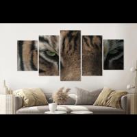 Karo-art Schilderij -Het oog van de Tijger,  5 luik, 200x100cm, premium print
