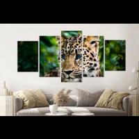 Karo-art Schilderij -Nieuwsgierig Luipaard welp,  5 luik, 200x100cm, premium print