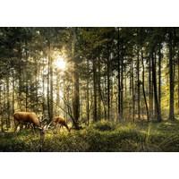 Karo-art Schilderij -Herten in het Bos, 100x70cm. Premium print