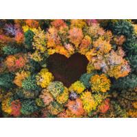 Karo-art Schilderij -Hart in het Bos, Liefde,  100x70cm, Premium print