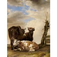 Karo-art Schilderij - Paulus Potter, , Twee koeien en een jonge stier naast een hek in een weiland, 1647, 60x90cm
