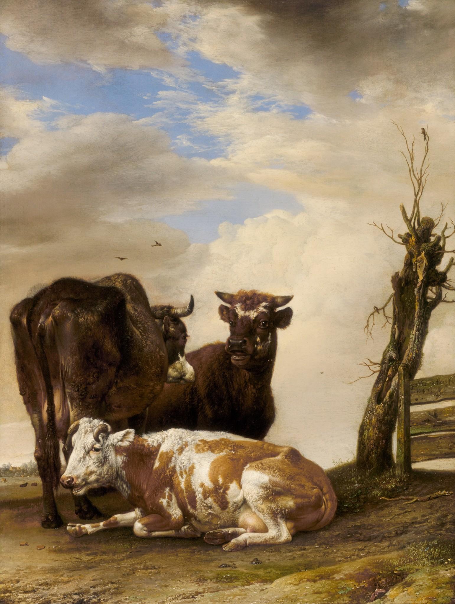 Schilderij - Paulus Potter, , Twee koeien en een jonge stier naast een hek in een weiland, 1647, 60x