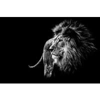 Karo-art Schilderij -Leeuw in zwart/wit, magisch, 2 maten, wanddecoratie