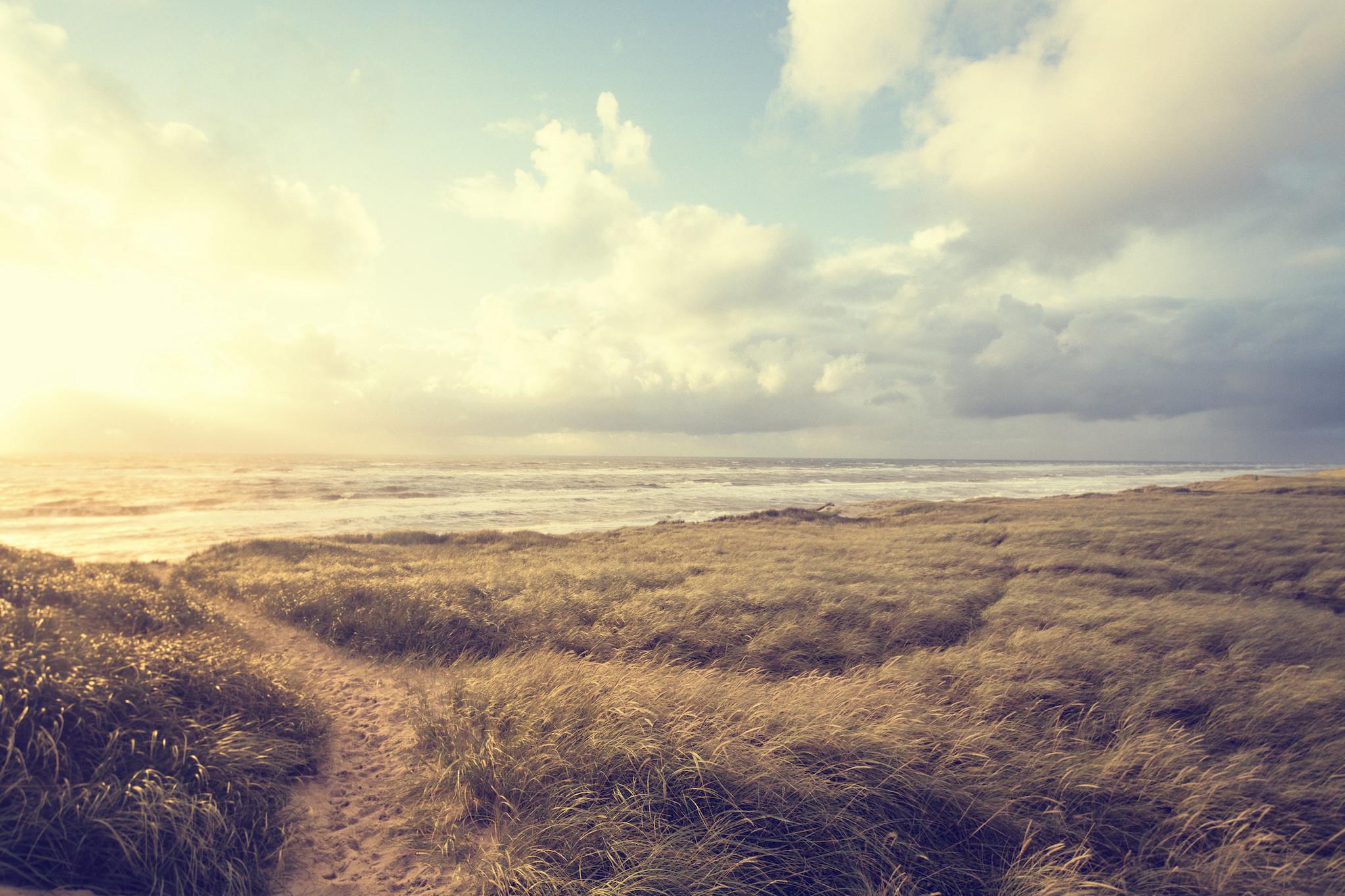 Schilderij -Dromerig strand, Noordzee, 3 maten, wanddecoratie -  1 luik - 90x60 cm