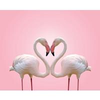Karo-art Schilderij -Flamingo Liefde, 90x70cm , wanddecoratie , premium print