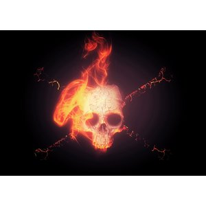 Karo-art Schilderij -Brandende schedel met zwarte achtergrond, 100x70cm  Premium print