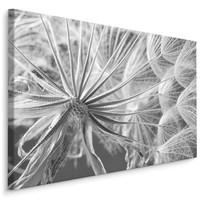 Schilderij -  Close up van een Paardebloem  , Wanddecoratie , Premium print
