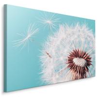 Schilderij -  Prachtige Paardebloem  , Wanddecoratie , Premium print