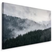 Schilderij - Bos in de wolken, premium print, wanddecoratie