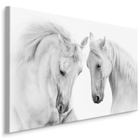 Schilderij - Twee prachtige schimmels in love, premium print