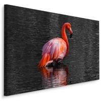 Schilderij - Flamingo in het water, 4 maten, roze/grijs, Premium print