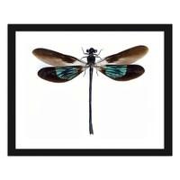 Foto in frame Libelle, multikleur, Premium print . 80x60cm