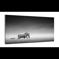Karo-art Schilderij -Olifant en Zebra op pad, zwart en wit, 100x70cm
