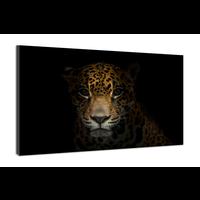 Karo-art Schilderij -Luipaard in het donker , 100x70cm, premium print