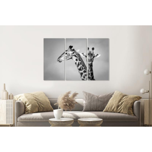 Karo-art Schilderij -  Giraffen zwart/wit, 120x80cm, 3 luik, premium print