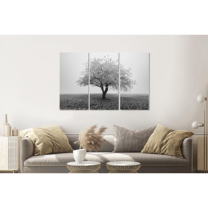Karo-art Schilderij -  Eenzame boom in zwart/wit, 120x80cm, 3 luik, premium print