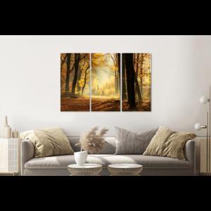 Karo-art Schilderij - Pad door een mistig bos tijdens een prachtige herfst dag, 120x80cm, 3 luik