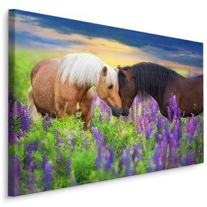 Schilderij - Paarden in de wei, multi-gekleurd, 4 maten, Premium print