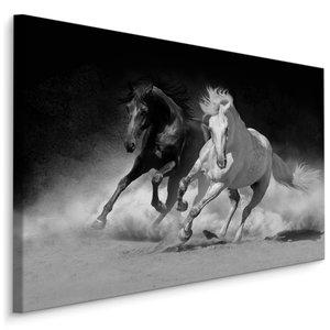 Schilderij - Galopperende paarden in zwart-wit, 4 maten, wanddecoratie