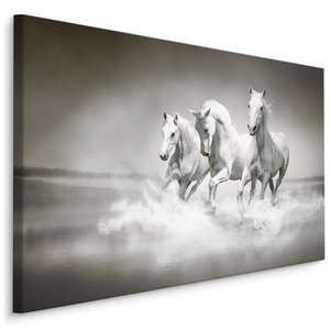 Schilderij - Wilde paarden in zwart-wit, 4 maten, premium print