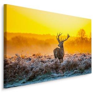 Schilderij - Hert in dauw, multi-gekleurd, 4 maten, premium print